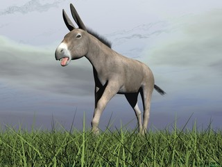 Angry donkey - 3D render