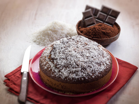 cake with chocolate and coconut, selective focus