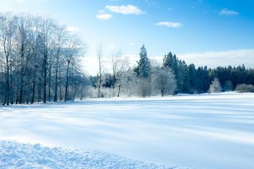 winter scenery at Dobel Germany