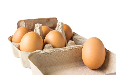 Egg box on white background