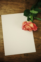 Rose and blank sheet