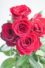 Bunch of five red roses