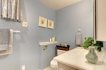 Simple light blue tones bathroom