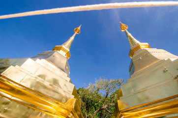 The pagoda in Wat phrathat doi Tung temple