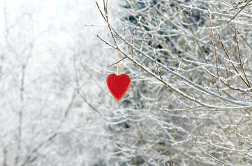 Red wooden heart on branch in winter