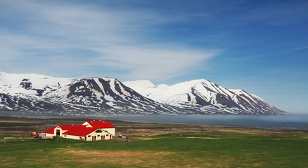 Wall Mural - Iceland landspace with fjord and mountain