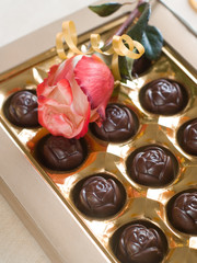 Beautiful rose and chocolate candies
