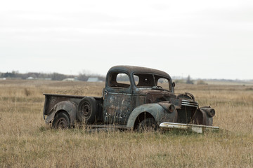 Old Rusty Truck in a pasture