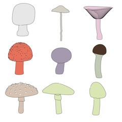 cartoon image of poisonous mushrooms