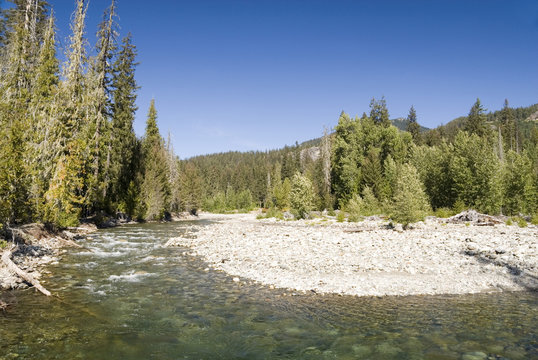 Okanogan Wenatchee National Forest WA USA