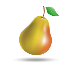 Figure ripe pears on white background