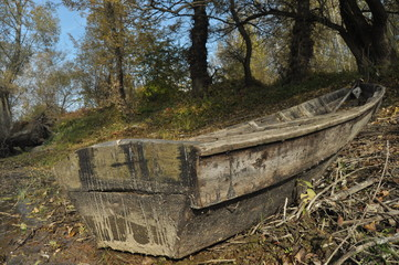 Wooden boat moored on the shore. An autumn day
