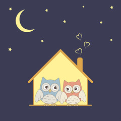 Cute owls couple in their cozy nest under stars