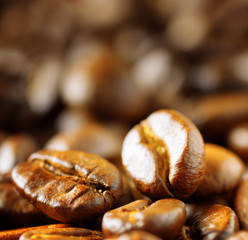 Roasted arabica. Close-up of coffee beans