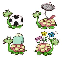 fun turtles