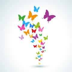 colorful butterflies taking flight