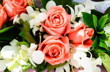 Bunch of pink rose flowers
