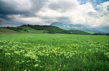 Beautiful mountain landscape with cloudy sky. Field in Crimea.