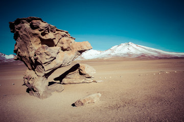 Wall Mural - Desert and mountain on Altiplano,Bolivia