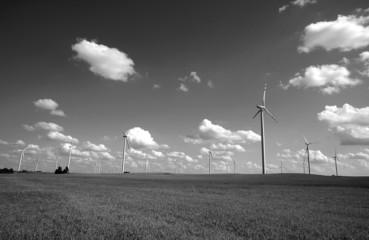 black and white turbines in wind farm, Poland
