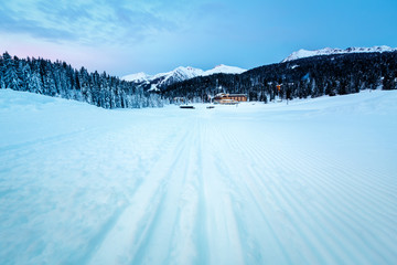 Fototapete - Ski Slope near Madonna di Campiglio Ski Resort in the Morning, I