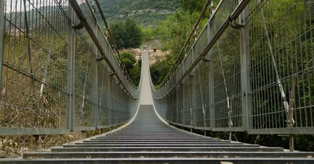 hinged bridge. Israel