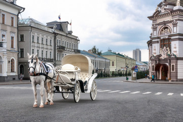 white horse-drawn in carriage