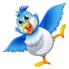 A cute bird