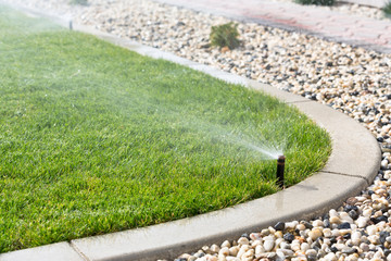 Wall Mural - Sprinklers watering grass