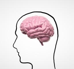 drawng head