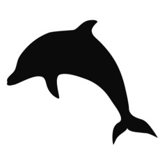 Dolphin silhouette isolated on white