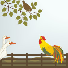 A cock on the fence with  gooses