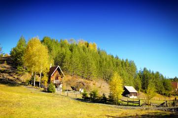 antique wooden village
