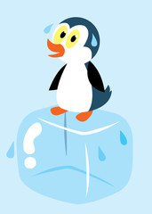 penguin on ice cube sweating