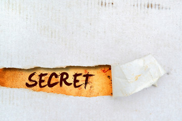 Secret title on old paper Wall mural