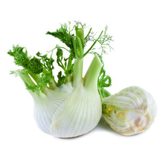 Fennel  isolated on white