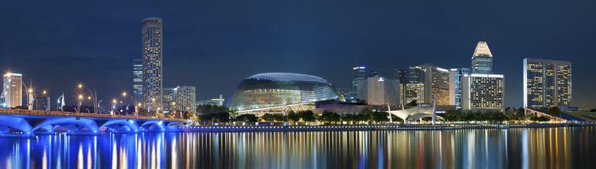 Foto auf Acrylglas Singapur Panorama of Singapore city at night