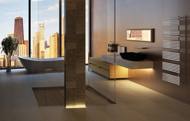 3D bathroom interior