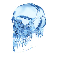 3d rendered illustration of a skull made of glass