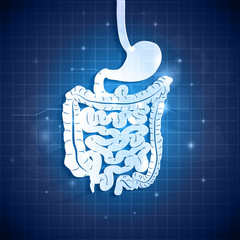 Human gastrointestinal tract abstract background