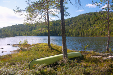 Fotomurales - Telemark, Waldlandschaft bei Notodden, Eksjo