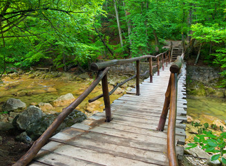 Wooden bridge in the summer canyon.