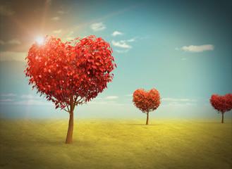 Arboles en forma de Corazón