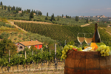 Wall Mural - White wine with barell in vineyard, Chianti, Tuscany, Italy