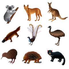 Australian animals vector set