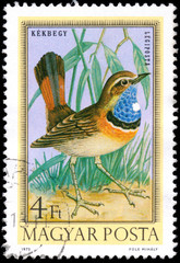 HUNGARY - CIRCA 1973: Postage stamp printed in Hungary showing B