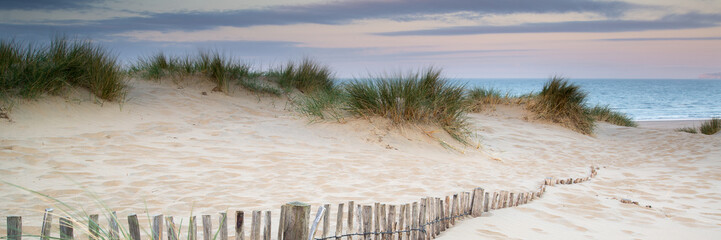 Spoed Fotobehang Landschap Panorama landscape of sand dunes system on beach at sunrise