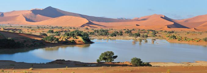 Poster de jardin Desert de sable Deadvlei and Sossusvlei panorama 3