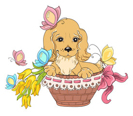 Dog in basket. Idea for greeting card on birthday