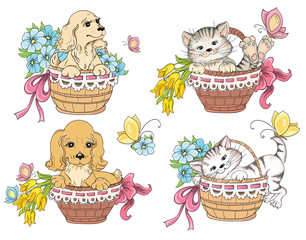 Cat and dog in basket. Idea for greeting card on birthday